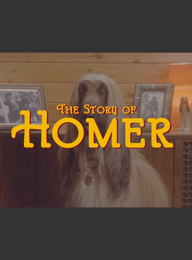 The Story of Homer